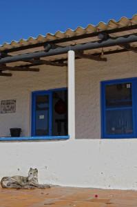 Cabo Polonio, 2010